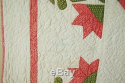 GORGEOUS Vintage 1880's Carolina Lily Antique Quilt AMAZING HAND QUILTING
